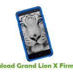 Grand Lion X Firmware