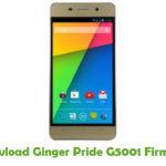 Ginger Pride G5001 Firmware