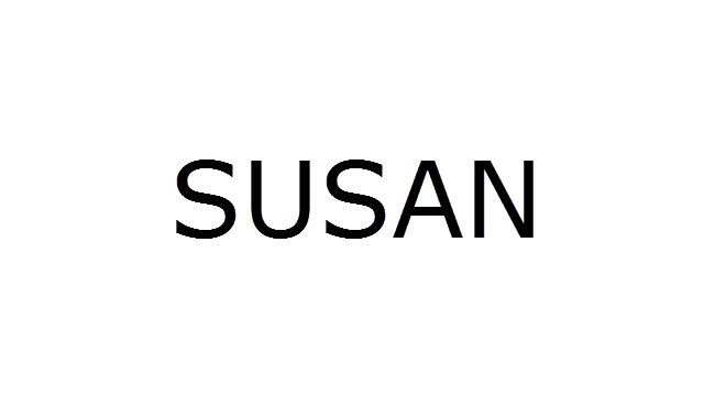 Download Susan Stock ROM