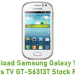 Samsung Galaxy Young Duos TV GT-S6313T Stock ROM